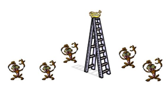 Sindrome nunca/siempre lo hicimos asi. Historia de los 5 monos