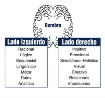 Hemisferios Cerebrales