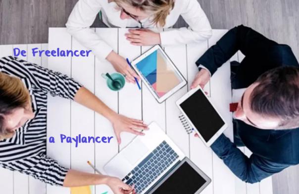 webinar para freelancers